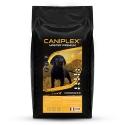 Caniplex Croissance